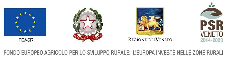 Fondo europeo agricolo per lo sviluppo rurale: l'Europa nelle zone rurali
